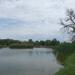 Tavaszi tópart