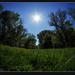 Kék az ég és zöld a fű