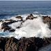 Album - Puerto de la Cruz 2020.01.20-02.03