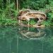 Miskolctapolca, csónakázó-tó