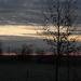 A reggel fényei... (3)
