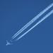 IMG 4900 repülő