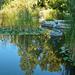 Az őszi tó