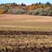 Őszi domborzat