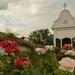 rózsakert a kápolnánál