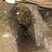 Barlangok, SzG3