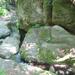 Visegrád, az Apát-kúti patak völgye, SzG3