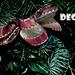 December Naptár