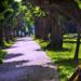 Bécs - Melki apátság stiftpark