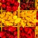 Magyar ízek vására - chili paprika