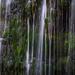 Album - JPS Wales Water falls