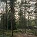 Finnland-36