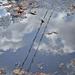 Vízbe bújt felhők
