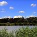 Öreg tó partja