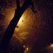 Köd, eső és nagyon reggel...
