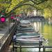Francia ősz