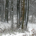 01 Tél a Medvesen