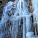 03 Bányató jégfa I.