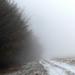 19 Ködös idő I.
