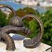 Mihajlo Kolodko: A kockásfülű nyúl