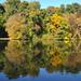 A tó vize is őszül