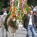 Őszi ünnep Tirolban, Stájerországban 2.