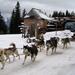 Téli örömök Zakopaneban