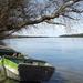 Csendélet a Duna parton