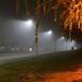 Éjjeli köd.