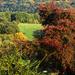 Őszi színek,,,