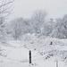 Album - Tél kevés hóval